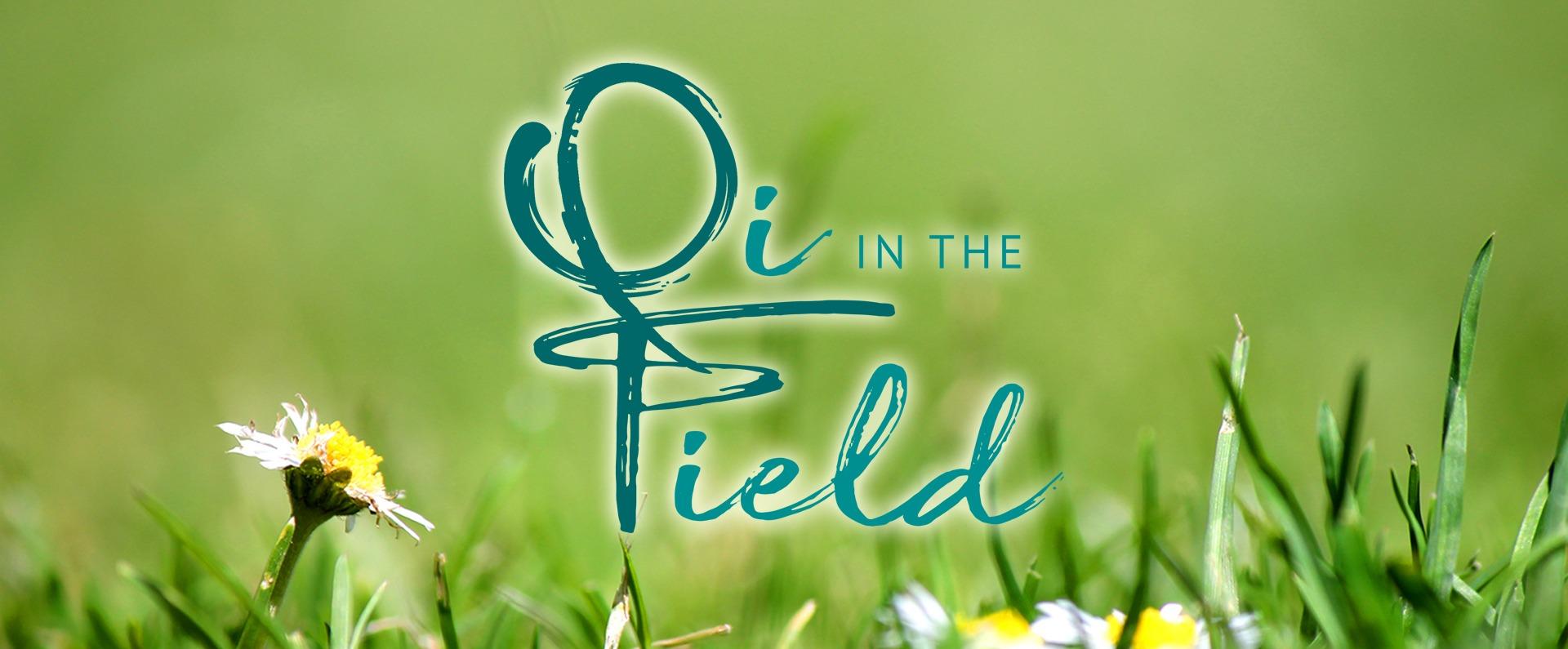 Qi in the Field 2018